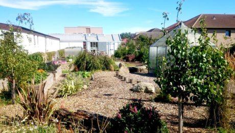 garden-arts-centre