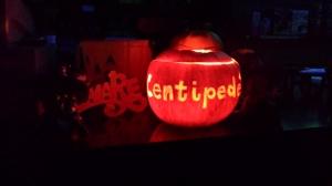 Centipede Project