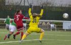 Hibs return to winning ways with 3-0 win over Forfar Farmington